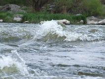 południowa pluskwy rzeka dzień lasowej wiosna podmiejski spacer Obraz Stock