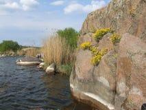 południowa pluskwy rzeka dzień lasowej wiosna podmiejski spacer Obrazy Royalty Free