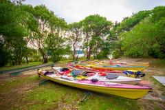 POŁUDNIOWA wyspa, NOWY CC$ZEALAND MAY 22, 2017: Kayaking w Abel Tasman parku narodowym, lokalizować w Południowej wyspie w Nowa Z Fotografia Stock