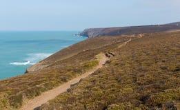 Południowa zachodnie wybrzeże ścieżka blisko Porthtowan Agnes Cornwall Anglia i St Fotografia Stock