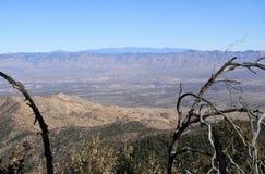 Południowy Arizona: Widok w San Pedro Rzeczną dolinę od Santa Catalina gór Fotografia Royalty Free