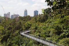 Południowy grań baldachimu spacer, Singapur Obraz Stock