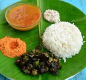 Południowy Indiański posiłek Obrazy Royalty Free