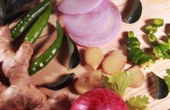 Południowy indyjski masala imbir, liście, zieleni chłodni, cebula i kolendery, zdjęcia royalty free