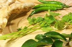 Południowy indyjski masala imbir, zieleni liście, chłodni i kolendery obrazy royalty free