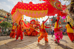 Południowy lwa taniec przy oko ceremonią otwarcia, damy Thien Hau pagoda, Wietnam zdjęcia royalty free