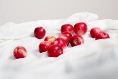 Połysk jaskrawy jak jabłko Fotografia Stock