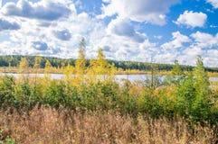 Połysk: Ptasi Raj rezerwat przyrody przy Sobieszewo wyspą w Gdańskim Obraz Royalty Free
