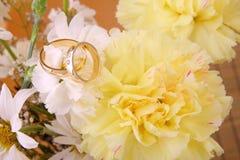 poślubić pierścieni Obrazy Royalty Free