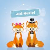 Poślubiać lisy royalty ilustracja