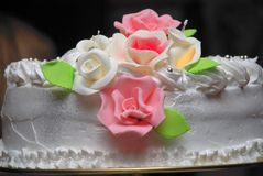 Poślubia cake05 obraz royalty free