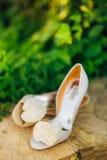 Poślubiający buty na dryluje granicę przeciw tłu zieleni liście Obraz Stock