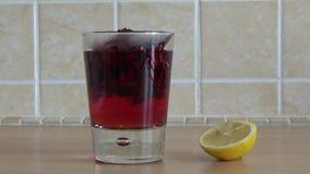 Poślubnik cytryny zdrowie herbaciany szkło zbiory wideo