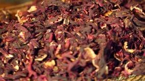 Poślubnik czerwieni suchy herbaciany zbliżenie zdjęcie wideo