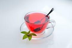 Poślubnik herbaciana szklana filiżanka na spodeczku z nowymi liśćmi i łyżką Obraz Stock