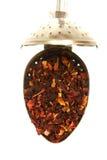 poślubnik herbata Fotografia Royalty Free