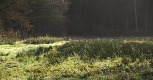 Pośpiechu krajobraz Zdjęcia Stock
