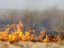 pożar Zdjęcie Stock