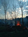 pożar zdjęcia stock