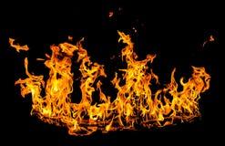 pożar lasu campingowy płomień Obraz Royalty Free