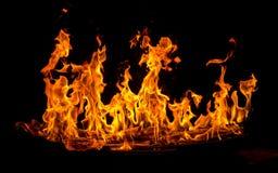 pożar lasu campingowy płomień Obrazy Royalty Free