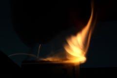 pożar lasu campingowy płomień Zdjęcie Royalty Free