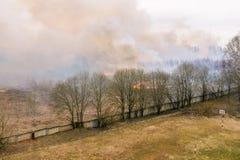 Po?ar lasu Za?wiecaj?ca sucha trawa i drzewa Zbli?a? si? ogienia budynki mieszkalni G?sty dym w lesie obrazy stock
