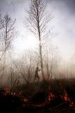pożar ogień Globalny nagrzanie, środowiskowa katastrofa Conce Obrazy Stock