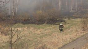 Pożarnicza sucha trawa i las w naturze, gasi pożar lasu strażakami, niebezpieczeństwo, nagły wypadek, niebezpieczeństwo zdjęcie wideo