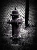 Pożarniczy hydrant Czarny i biały Zdjęcie Royalty Free