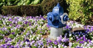 Pożarniczy hydrant w kwiatach fotografia royalty free