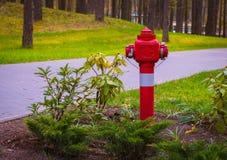 Pożarniczy hydranty w parku, czerwony pożarniczy hydrant w Druskinikai, Lithuania Kwiecień, 25 2017 Obrazy Royalty Free