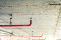 Pożarniczy kropidło i czerwieni drymba (Filtrujący wizerunek przetwarzający rocznik obraz royalty free