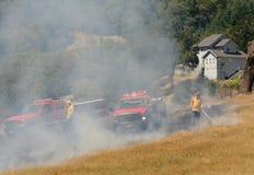pożarniczy naturalny Zdjęcie Royalty Free