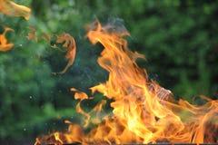 pożarniczy płomień Obrazy Royalty Free