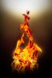 Pożarniczy płomień na czarnym tle - Piękny kolor żółty, pomarańczowy i ponowny Fotografia Stock