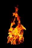 Pożarniczy płomień na czarnym tle - Piękny kolor żółty, pomarańczowy i ponowny Obraz Royalty Free