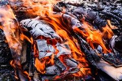 Pożarniczy płonący drewno Obraz Royalty Free