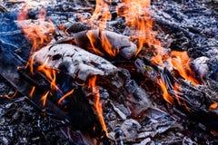 Pożarniczy płonący drewno Fotografia Stock