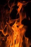 Pożarniczy pomarańczowy beaty pomarańczowy kolor Obrazy Stock