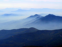 Pożaru Lasu dym wypełnia prescotta las państwowego Zdjęcie Stock
