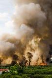 Pożary lasu w mieście na gorącym oversupply Strażak pomagać pośpieszać zapobiegać ogienia rozprzestrzeniającego wioska zdjęcia stock