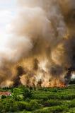 Pożary lasu w mieście na gorącym oversupply Strażak pomagać pośpieszać zapobiegać ogienia rozprzestrzeniającego wioska fotografia royalty free