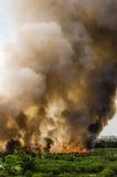 Pożary lasu w mieście na gorącym oversupply Strażak pomagać pośpieszać zapobiegać ogienia rozprzestrzeniającego wioska fotografia stock