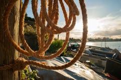Połów arkana Zdjęcie Royalty Free