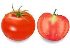 połówka swój pomidor Fotografia Stock