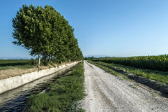 Po ścieżka trasa Balaguer Obrazy Royalty Free