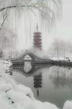Po śnieżny Blady shanu wierza Obrazy Stock