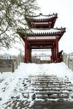 Po śniegu Zdjęcie Royalty Free