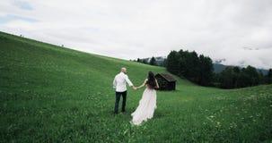 Po środku zieleni pola potomstw pary bieg zadziwiającego puszka drewniany dom zbiory wideo